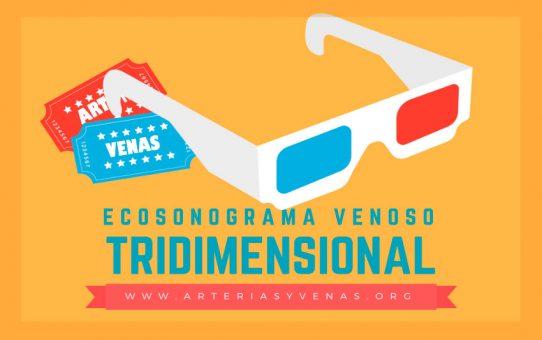 Ecosonograma venoso tridimensional
