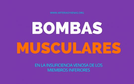 Bombas musculares