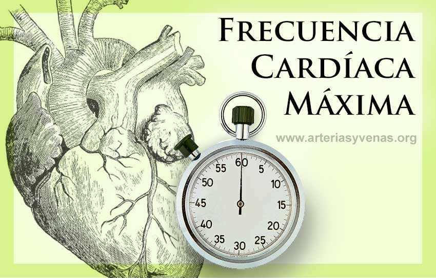 Frecuencia cardiaca máxima