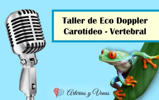 Curso de Eco Doppler Carotídeo