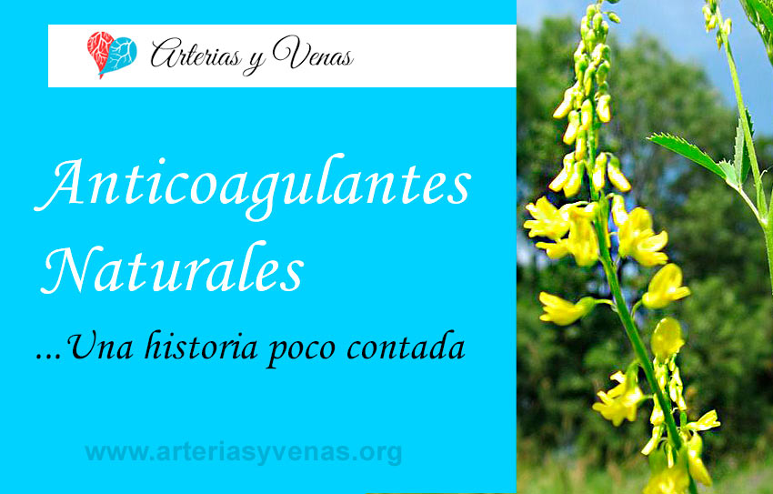 Anticoagulantes naturales