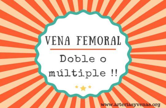 Vena Femoral