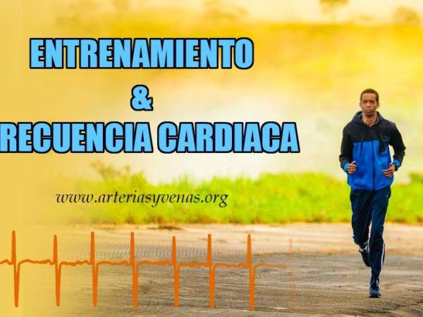 Frecuencia cardíaca y entrenamiento