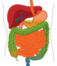 Anticoagulación y estreñimiento