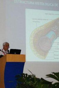 Dr. Luis Rocha