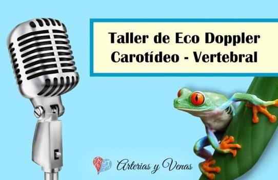 Curso de Eco Doppler Carotídeo