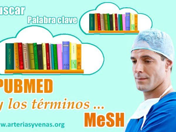 Términos MeSH en PUBMED